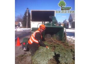 Longueuil tree service Émondage Leavey