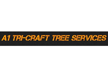 Port Coquitlam tree service A1 Tri-Craft Tree Services