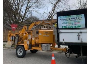 Kitchener tree service A-1 Year Round Tree Service