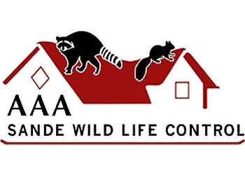 Toronto animal removal AAA Sande Wildlife Control