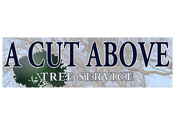 Kingston tree service A Cut Above Tree Service