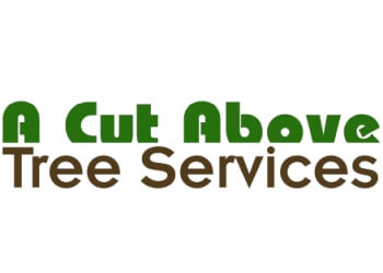Medicine Hat tree service A Cut Above Tree Services