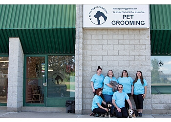 Guelph pet grooming ALL ABOUT GROOMING