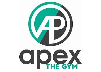 Richmond gym APEX The Gym