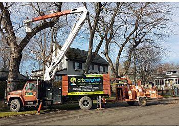 Granby tree service Aboxygene