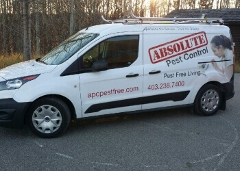 Calgary animal removal Absolute Pest Control