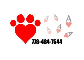 Ace of Hearts Dog Grooming
