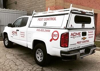 Milton pest control Acme Pest Solutions