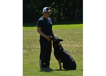 Maple Ridge dog trainer Action K9