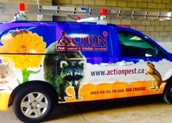 Hamilton pest control Action Pest Control Services Inc.