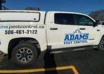 Fredericton pest control Adams Pest Control