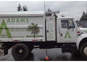 Victoria tree service Adams Tree Service