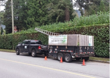 Vancouver tree service Aesthetic Tree & Hedge Services Ltd.