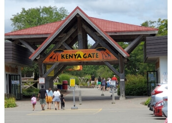 Hamilton places to see African Lion Safari