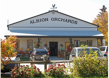 Albion Orchards & Country Market