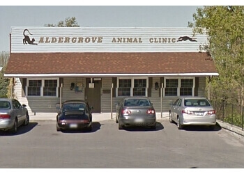 Barrie veterinary clinic Aldergrove Animal Clinic