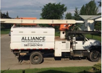 Grande Prairie tree service Alliance Tree & Stump Removal Inc.