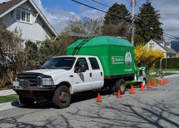 North Vancouver tree service ArborGreen Tree Care Specialists