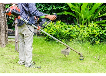 Coquitlam lawn care service Arbora Property Services and Landscaping