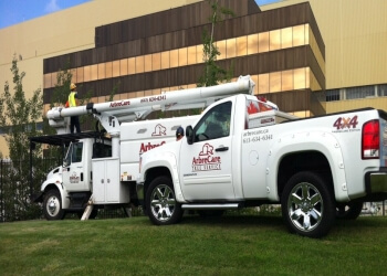 Kingston tree service Arbrecare Tree Service