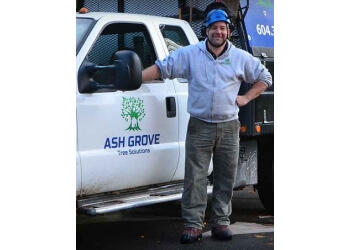 Richmond tree service Ash Grove Tree Solutions Inc.