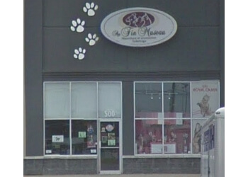Trois Rivieres pet grooming  Au Fin Museau
