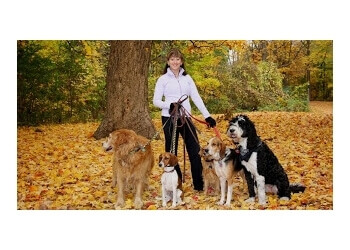 Ottawa dog trainer AwesomeK9