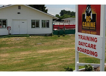 Richmond dog trainer BC Canine Training Centre
