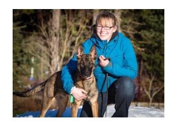 Stratford dog trainer Bad Dogs Gone Good