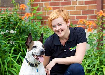 Dog Agility Training Niagara Region