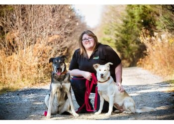 North Bay dog trainer Bark Busters