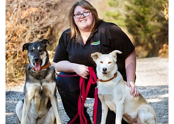 Sudbury dog trainer Bark Busters