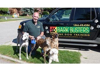 Kitchener dog trainer Bark Busters In Home Dog Training