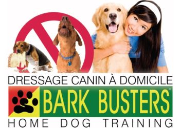 Montreal dog trainer Bark Busters