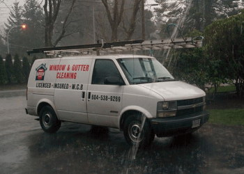 Delta gutter cleaner Bayview Cleaners