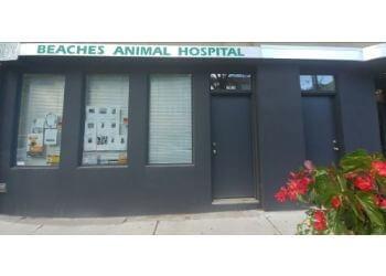 Toronto veterinary clinic Beaches Animal Hospital