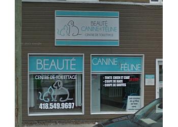 Saguenay pet grooming Beauté Canine et Féline