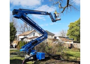 Niagara Falls tree service Beaver Tree Service