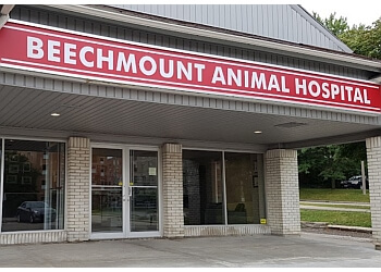 Waterloo veterinary clinic Beechmount Animal Hospital