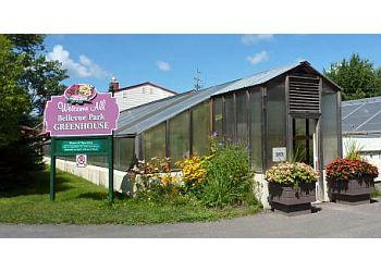 Bellevue Park Greenhouse