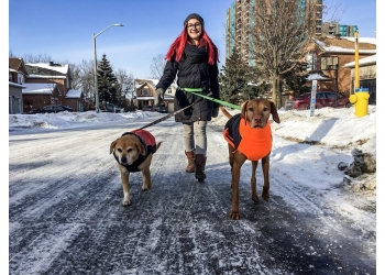 Ottawa dog walker Bitches Walking Dogs
