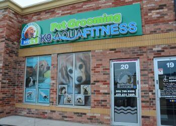 Brampton pet grooming Bitu's Pet Services