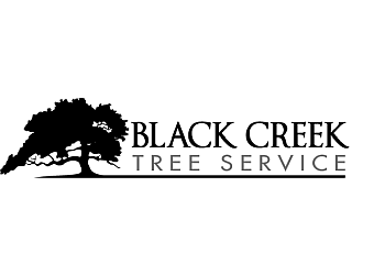 Brantford tree service Black Creek Tree Service