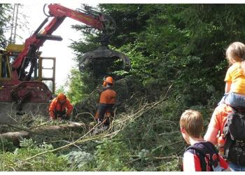 Chilliwack tree service Black Forest Tree Service LTD