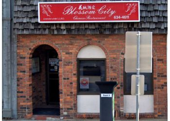 Burlington chinese restaurant Blossom City Chinese Restaurant