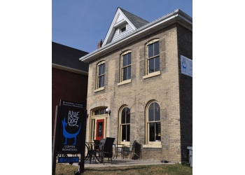 Brantford cafe Blue Dog Coffee Roasters