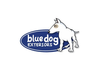 Cambridge fencing contractor Blue Dog Exteriors