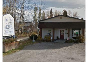 North Bay veterinary clinic Blue Sky Animal Hospital