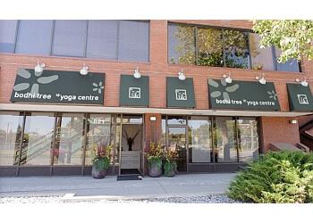 Calgary yoga studio Bodhi Tree Yoga Centre