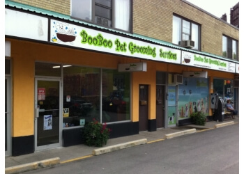 Toronto pet grooming BooBoo Pet Grooming Services
